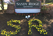 Sandy Ridge Image Gallery